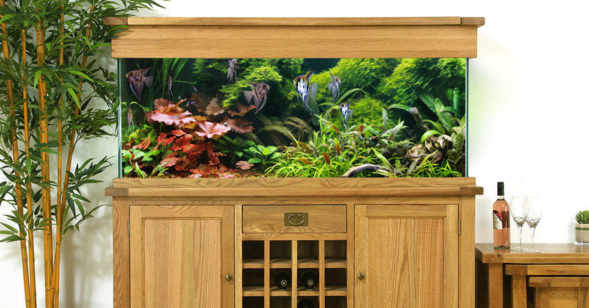 AQ160WR 160cm Wine Rack Aquarium Room Setting