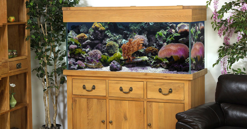 AQ150PS Plank Oak Systemised Aquarium Room Setting